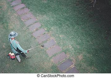 전기, 손질하는 사람, 또는, 노동자, backyard., 잔디를 깎는 것, 풀, 가솔린