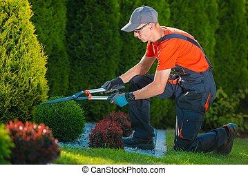 전문가, 일, 정원사