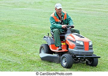 전문가, 잔디밭 채초