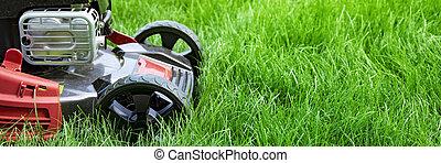 절단, 뒤뜰, 풀 풀 베는 기계, 녹색 잔디밭