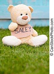 정보, 테디, 판매, 곰, 보유, 판지