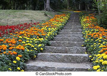 정원사 노릇을 함, 돌, 제자리표, 벽, 유지, 가정, 층계, 정원