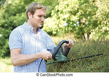 정원, 손질하는 사람, 절단, 산울타리, 남자, 전기