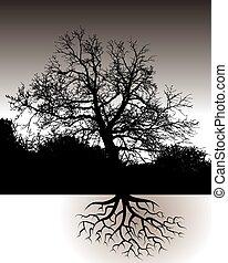 조경술을 써서 녹화하다, 뿌리, 나무
