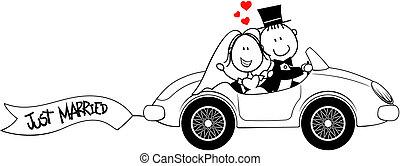 차, 신랑, 고립된, 신부