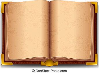 책, 늙은, 열는