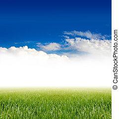청록색, 풀, 하늘, 억압되어