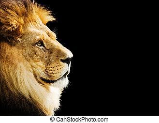 초상, 사자