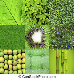 콜라주, 녹색
