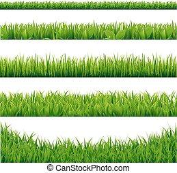 크게, 세트, 풀, 녹색