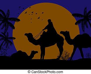 트레일러, 유목민, 낙타