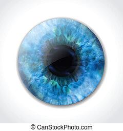 파란 눈, 벡터, macro., 눈동자
