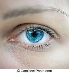 파란 눈, 여자, macro., 벡터
