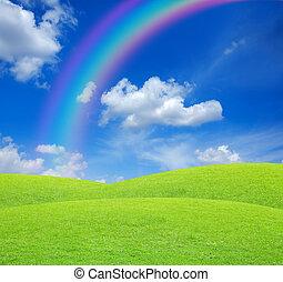 파랑, 무지개, 하늘, 녹색 분야