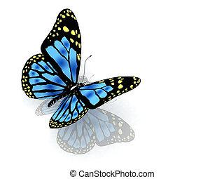 파랑, 색, 나비