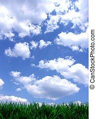 파랑, 신선한, 하늘, 녹색, gras
