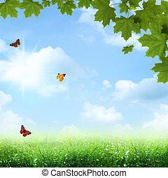 파랑, 여름, 봄, 떼어내다, 배경, 억압되어, skies.