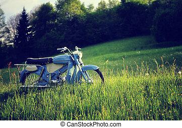 포도 수확, concept., 오토바이