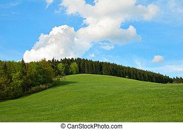 푸른 하늘, 들판, 녹색 언덕, 숲
