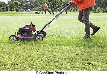 풀을 깎는 것, 잔디 깎는 사람, 들판, 잔디, 노동자