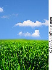 풀, 녹색의 풍경