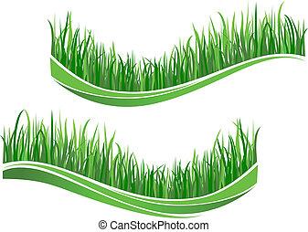 풀, 녹색, 파도