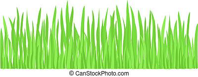 풀, 녹색, (vector)