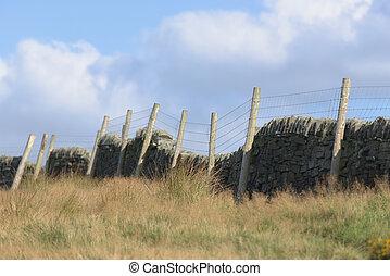 풀, 벽, 돌, 동정하다, 길게, 들판, 백열, 가을, 고매하다