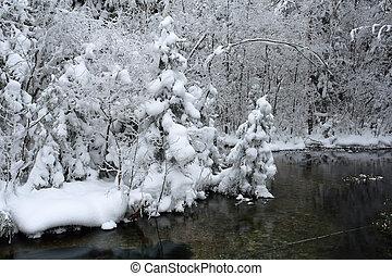 풍경, 서리가 내리는, 일, 겨울