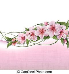 핑크, 봄의 꽃, 배경, 버찌