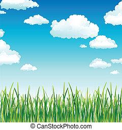 하늘, 풀, 구름, 녹색, 이상