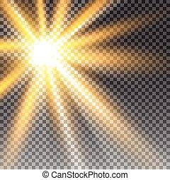 햇빛, 투명한, 벡터