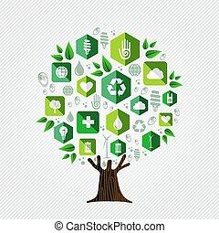 환경, 개념, 생태학, 나무, 녹색