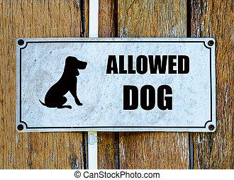 환영, 개, 표시
