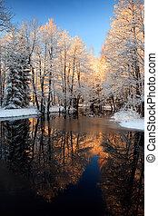 황금, 강, 일몰, 겨울