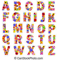 -, 편지, 꽃의, z, 고립된, 백색, 알파벳, 가득하다