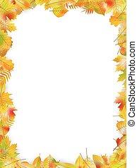 10, 잎, 고립된, eps, 가을, 벡터, white., 구조