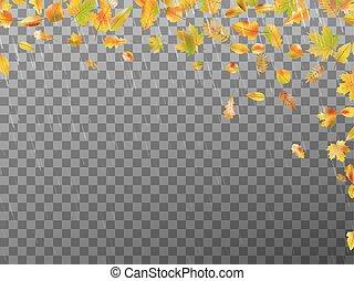 10, leaves., eps, 가을, 벡터, 눈이 듯한