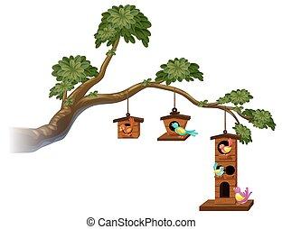 birdhouses, 새, 가지
