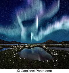 borealis, 오로라