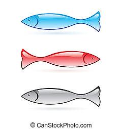 fish., 떼어내다