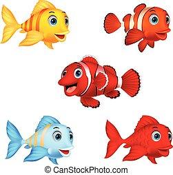 fish, 세트, 만화, 수집