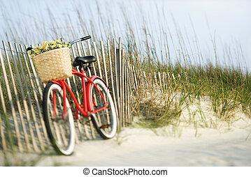flowers., 자전거