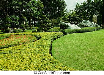 garden., 잔디, 녹색, 아름다운