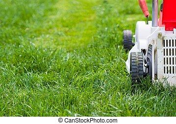 garden., 잔디 풀 베는 기계, 절단, 녹색 잔디