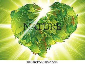 heart-leaves, 녹색