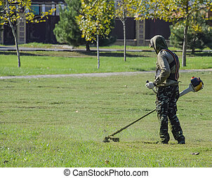 lawn., 깎는 것, 노동자, 풀, 손질하는 사람