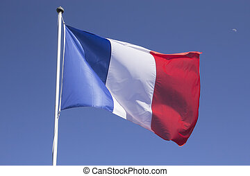 mast., 프랑스 기