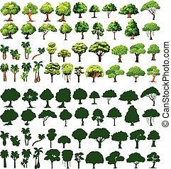 silhoutte, 나무