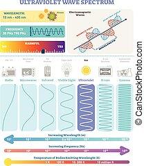 spectrum., 주파수, 파도, 자외선, 벡터, waves:, structure., 파장, 전자기, 삽화, 도표, 유해성